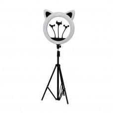 Лампа RK-45 кольцевая Панда 3D три подставки (штатив в наборе)